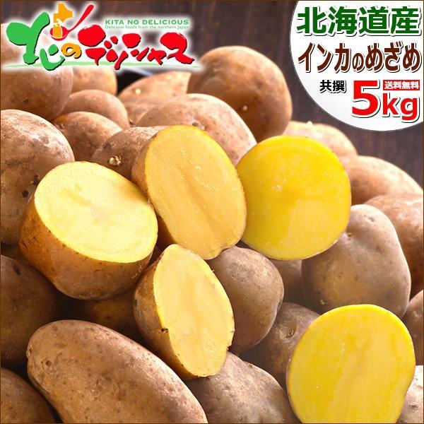 【出荷中】北海道産 新じゃが じゃがいも インカのめざめ 5kg ジャガイモ 馬鈴薯 越冬 野菜 自宅用 家庭用 人気 北海道 食品 グルメ 送料無料 お取り寄せ