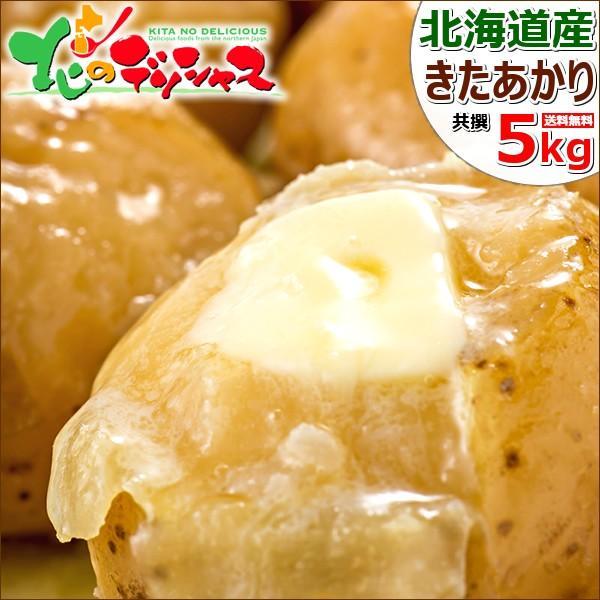 【予約】北海道産 新じゃが じゃがいも キタアカリ 5kg きたあかり ジャガイモ 馬鈴薯 越冬 野菜 自宅用 家庭用 人気 北海道 食品 グルメ 送料無料 お取り寄せ