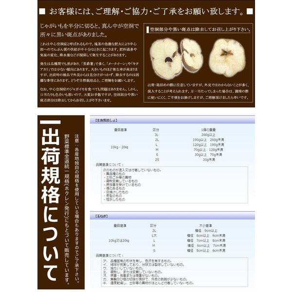 北海道 じゃがいも 訳あり キタアカリ 10kg Lサイズ 北海道産 きたあかり 新じゃがいも 馬鈴薯 秋野菜 野菜 グルメ 送料無料 お取り寄せ|g-hokkaido|04