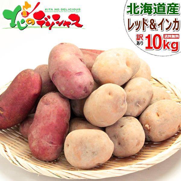 【出荷間近】北海道産 新じゃが じゃがいも ご家庭用 10kg(インカのめざめ 5kg・レッドムーン 5kg) ジャガイモ 馬鈴薯 越冬 野菜 北海道 送料無料 お取り寄せ