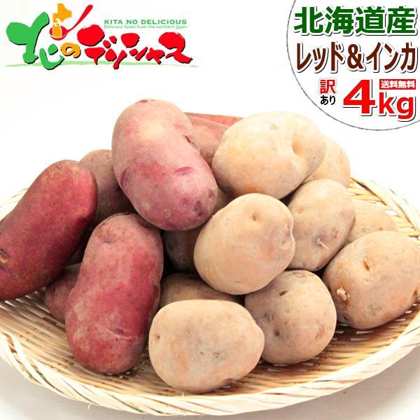 【予約】北海道産 新じゃが じゃがいも ご家庭用 4kg(インカのめざめ 2kg・レッドムーン 2kg) ジャガイモ 馬鈴薯 越冬 野菜 北海道 グルメ 送料無料 お取り寄せ
