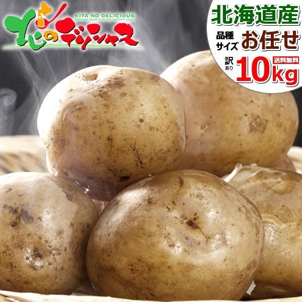 【連日出荷中】北海道産 新じゃが 訳あり じゃがいも 10kg ジャガイモ 馬鈴薯 野菜 自宅用 家庭用 人気 売れ筋 北海道 グルメ 送料無料 お取り寄せ