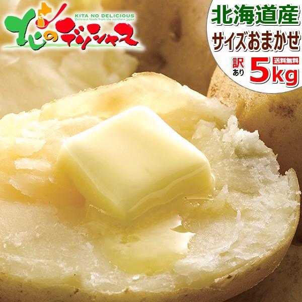【出荷中】北海道産 訳あり 新じゃが じゃがいも 5kg (JA共撰/サイズお任せ/品種お任せ) ジャガイモ 馬鈴薯 野菜 北海道 食品 グルメ 送料無料 お取り寄せ