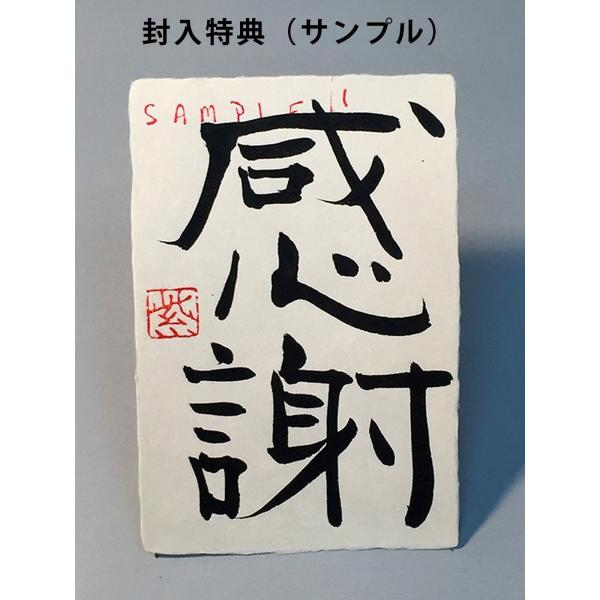 紫舟 作品集 BIGBOOK|g-tsutayabooks|13
