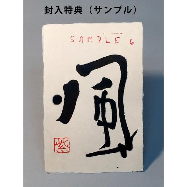紫舟 作品集 BIGBOOK|g-tsutayabooks|14