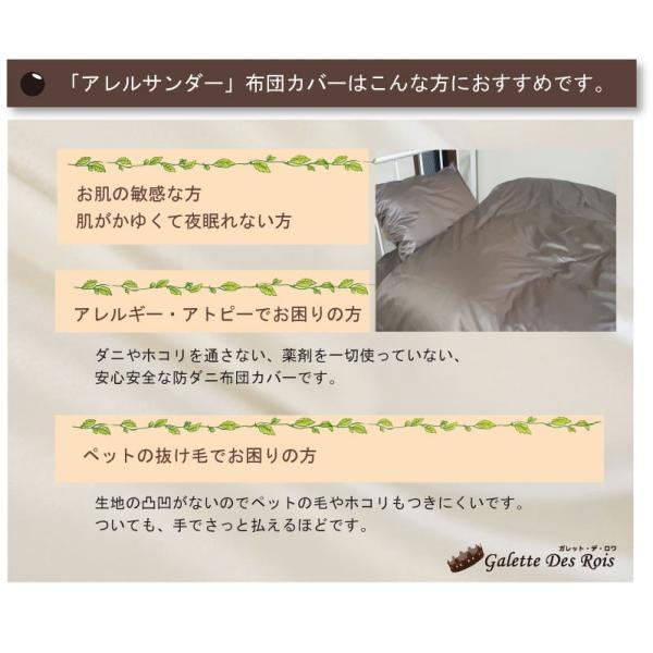 G 少々難あり アレルサンダー ピロケース 43×63cm 高密度生地使用 薬剤不使用 防ダニ 枕カバー ピローケース軽量・速乾 シルク100%のような光沢 galette-des-rois 03