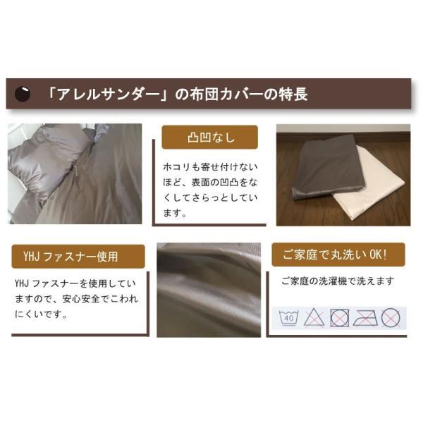 G 少々難あり アレルサンダー ピロケース 43×63cm 高密度生地使用 薬剤不使用 防ダニ 枕カバー ピローケース軽量・速乾 シルク100%のような光沢 galette-des-rois 05