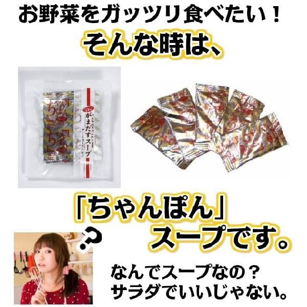 ちゃんぽんスープ 20食セット|gamadasu|02