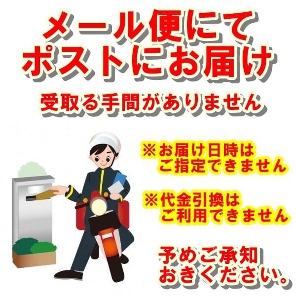 ちゃんぽんスープ 20食セット|gamadasu|08