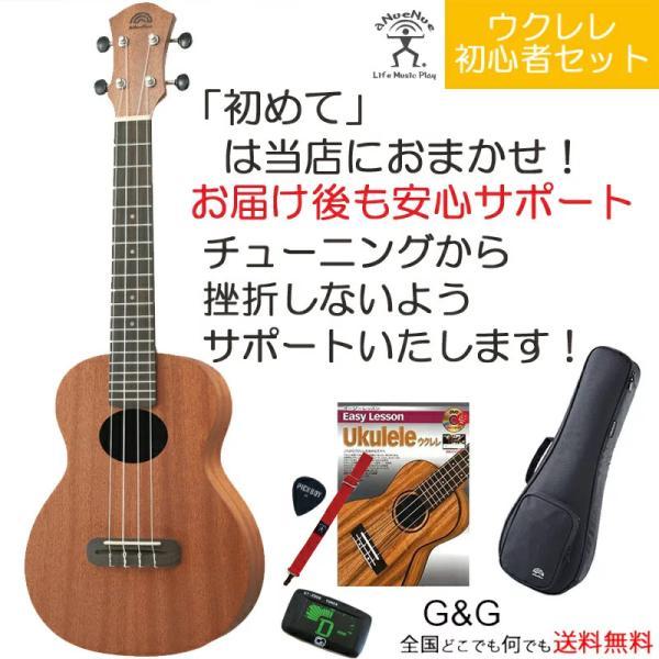 ウクレレ初心者セット アヌエヌエ コンサート ウクレレ おうち時間を応援します コンサートサイズ aNueNue aNN-B2 Lumi Basic II Mahogany Concert Ukulele