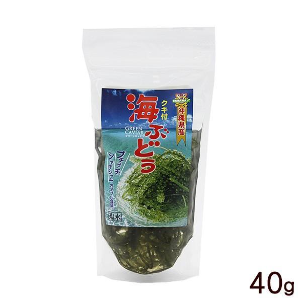 海ぶどう 塩水漬け 茎付き 40g (平良商店)