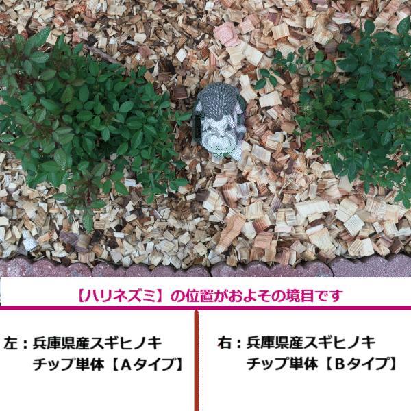 ★【ほとんど全国送料無料(対象外地域あり)・3袋セット】  兵庫県産スギヒノキウッドチップ単体Bタイプ 計150L(50L×3袋)|gardenas-okayama1|03