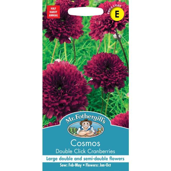 【輸入種子】 Mr.Fothergill's Seeds Cosmos Double Click Cranberries コスモス ダブル・クリック・クランベリー ミスター・フォザーギルズシード