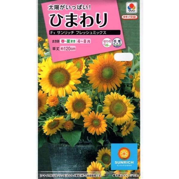 【種子】ひまわり F1 サンリッチ フレッシュミックス タキイ種苗のタネ