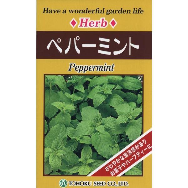 【種子】ペパーミント トーホクのタネ