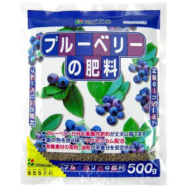 【肥料】花ごころ ブルーベリーの肥料 500g