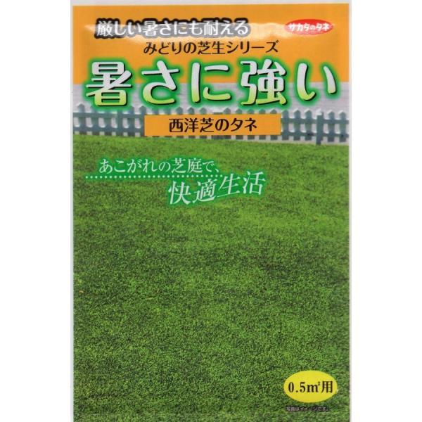 【種子】西洋芝 暑さに強い西洋芝(芝草) サカタのタネ