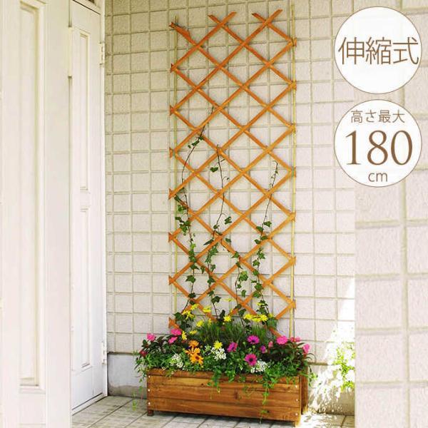 木製フェンス 柵 仕切り 木製トレリス ガーデニング 木製 伸縮 トレリス フェンス 幅60×高さ180cm