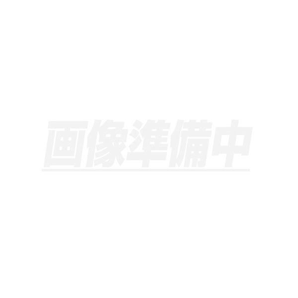 Gラインスコープ用 モニタ本体 440311 GLS2820/2220用 レッキス工業