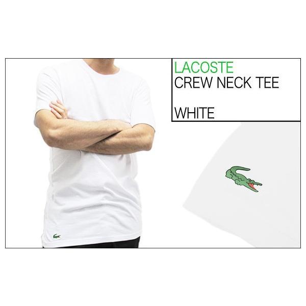 ラコステ LACOSTE 半袖 Tシャツ ワンポイント クルーネック メンズ 男性用 (メール便対応可)|gb-int|05
