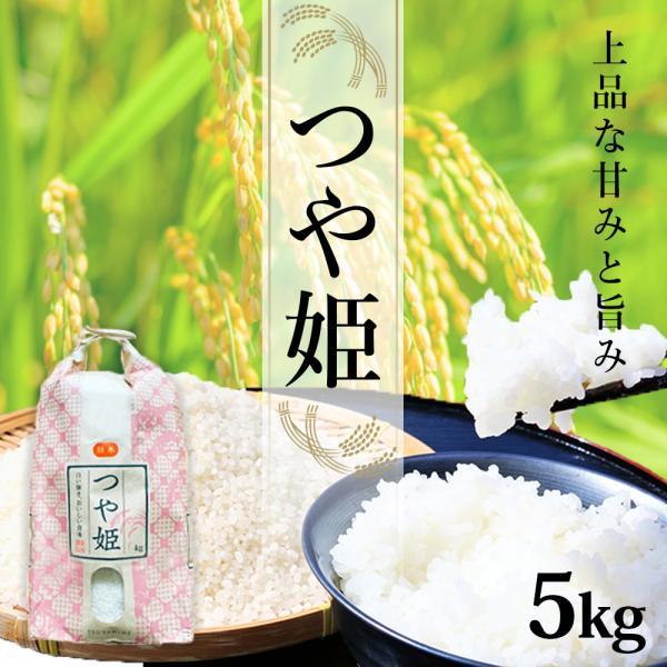 米 5kg つや姫 山形県産 お米 精白米 安い ブランド米