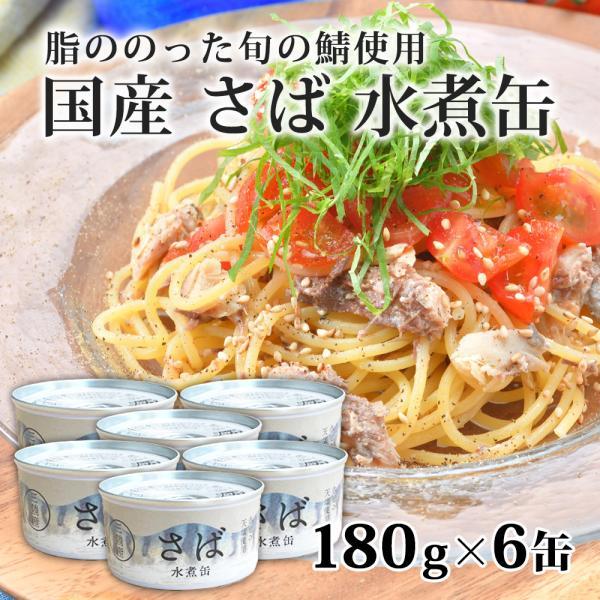 サバ缶 国産 水煮 鯖缶 さば 缶詰 160g×6缶(タイム缶詰)