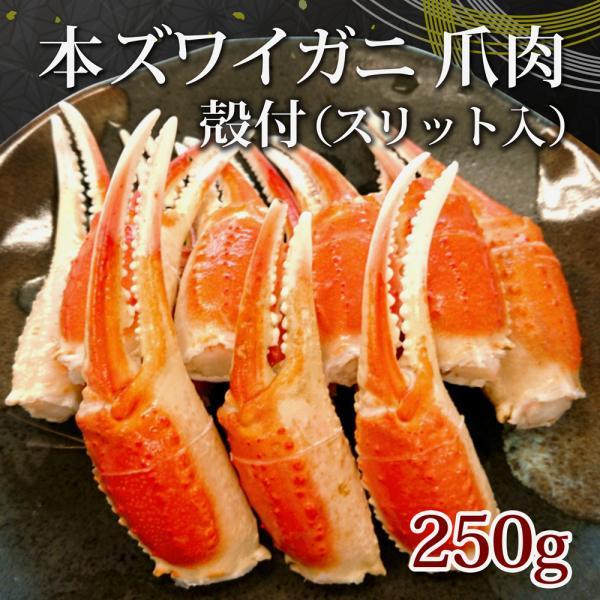 ボイル本ずわいがに 爪肉  殻付き 250g カニ かに 蟹 ズワイガニ 冷凍 ギフト (タイム缶詰)
