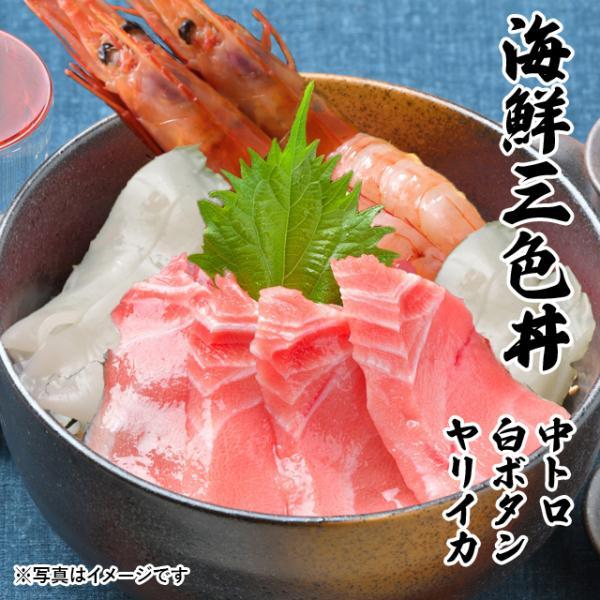 海鮮三色丼 中トロ ボタンエビ ヤリイカ 海鮮丼 海鮮 セット 刺身 敬老の日 プレゼント ギフト 3〜4人前