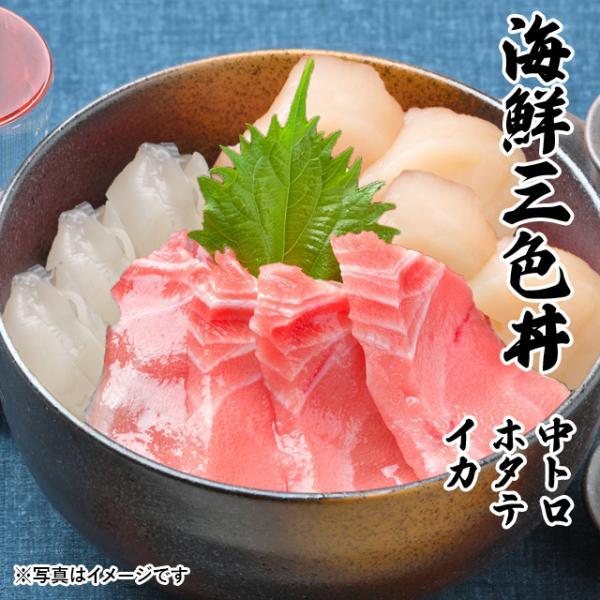 海鮮三色丼 中トロ ホタテ イカ  海鮮丼 海 鮮セット 刺身 敬老の日 プレゼント ギフト 3〜4人前