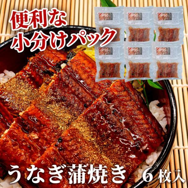 うなぎ 鰻 蒲焼 カット 丑の日 直火焼き 3人前 100g×6枚 小分け 冷凍