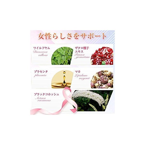 SweetPlus サプリメント 14種配合 30日分 general-purpose 09