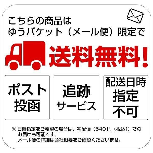 メール便 送料無料 耳かき 鯖江 ギフト 贈り物|generalstore-y|08
