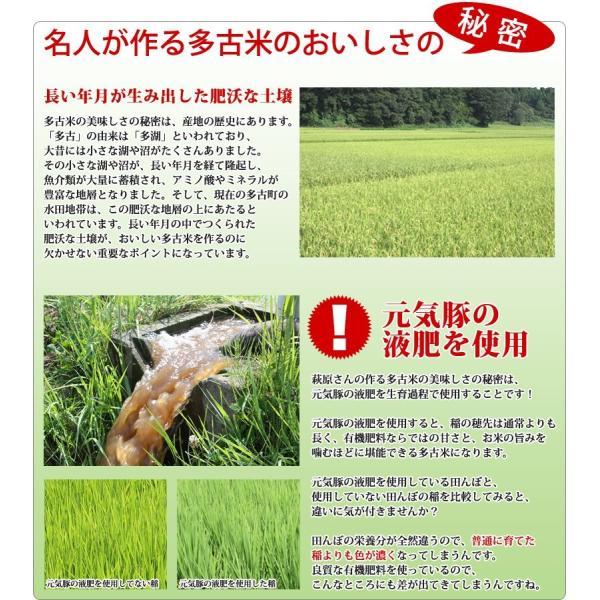<令和元年度産>送料無料 萩原さん家の多古米(白米5kg) genkibuta 08