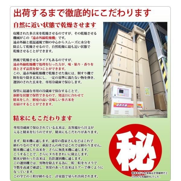 <令和元年度産>送料無料 萩原さん家の多古米(白米5kg) genkibuta 09