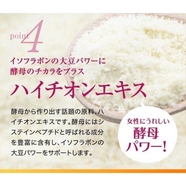 【送料無料】鳥飼豆腐のイソフラボンゼリー10g×30包(レモン味) サプリ 大豆サプリメント 美容と健康づくりに|genkiya6090|08