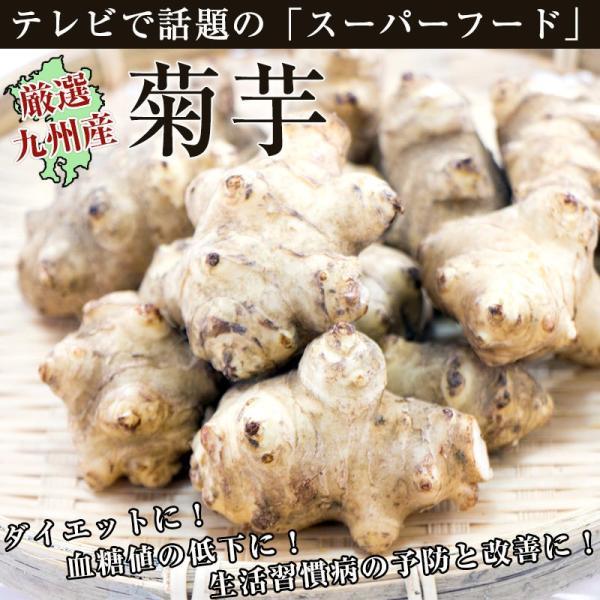 菊芋1袋(約500g) 佐賀七山・福岡糸島の新鮮野菜|genkiya6090