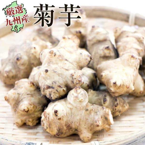 菊芋1袋(約500g) 佐賀七山・福岡糸島の新鮮野菜|genkiya6090|02