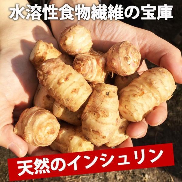 菊芋1袋(約500g) 佐賀七山・福岡糸島の新鮮野菜|genkiya6090|05