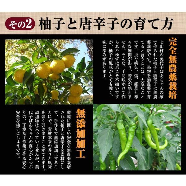 佐賀県七山産の柚子胡椒80g(送料無料)2袋購入でもう1袋プレゼント ポイント消化 お試し|genkiya6090|05