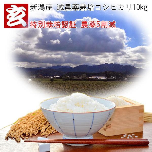 新米 10kg 送料無料 30年産 新潟県 ミネラルコシヒカリ 玄米 10kg 送料無料 ミネラル栽培米 ※精米選択可 (1285)|genmaiya-tarui