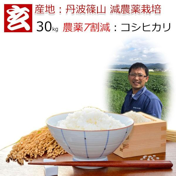 米 30kg 玄米 送料無料 農薬7割減栽培 丹波 篠山産 減農薬米 コシヒカリ 産年:令和2年