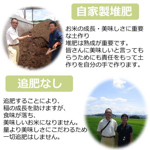 (お米 コシヒカリ 10kg 送料無料 5kg2袋)  30年産 丹波 篠山産 農薬70%減 コシカリ 10kg 送料無料 ※玄米から白米まで精米選べます (440) genmaiya-tarui 02
