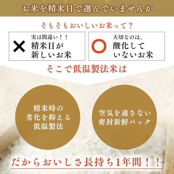 精米生鮮米 無洗米 北海道産 ななつぼし 2合パック 300g 令和元年産 gerberashop 02