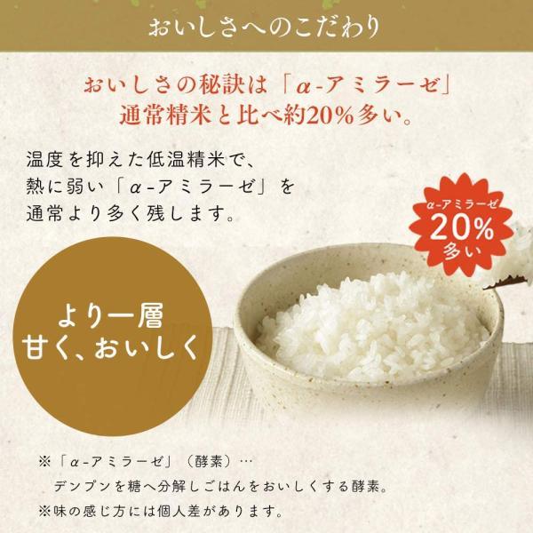 精米生鮮米 無洗米 北海道産 ななつぼし 2合パック 300g 令和元年産 gerberashop 04