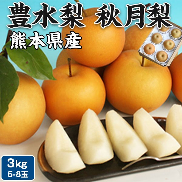 梨 (豊水梨 又は 秋月梨) 3kg(5-8玉) 熊本県産 ナシ 贈答用 秋 果物 高級ギフト・送料無料