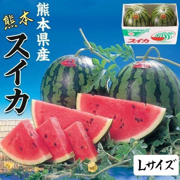 スイカ 熊本県産 1箱 Lサイズ・5キロ ×2玉セット 高級すいか/等級:秀(赤)|化粧箱入り 贈答用 ギフト・送料無料