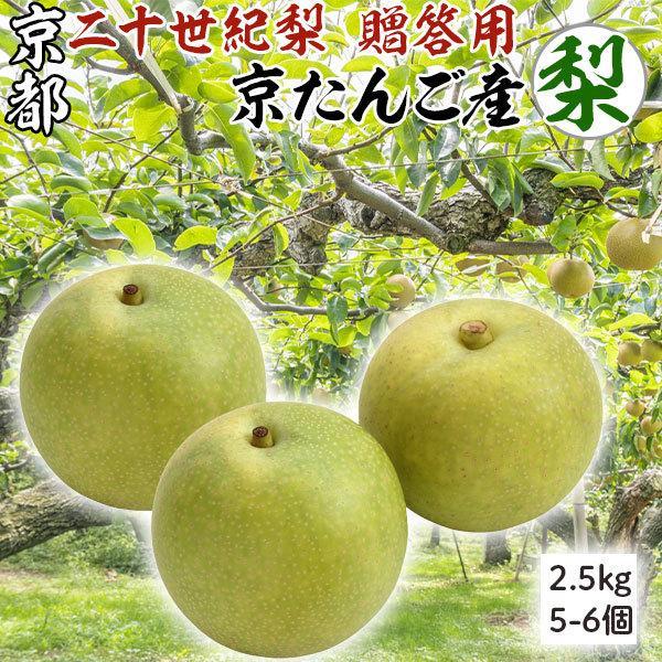 二十世紀 梨 京たんご産 2.5キロ  (5-6個) 贈答用 京丹後市産 高級ギフト K農園限定 限定出荷 送料無料