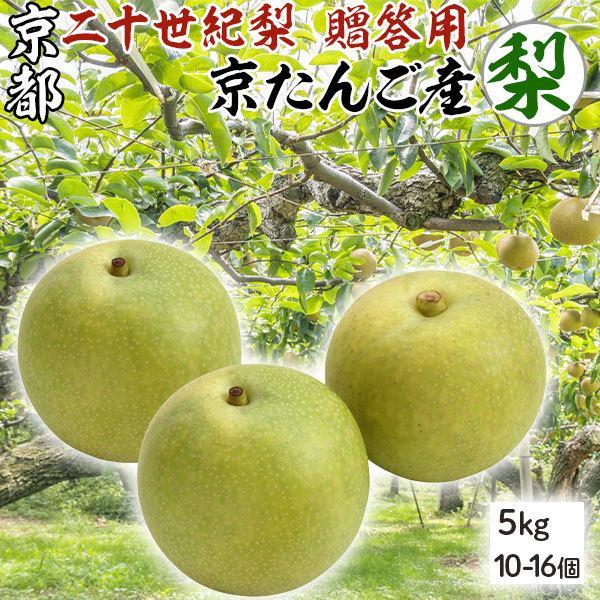 二十世紀 梨 京たんご産 5キロ  (10-16個) 贈答用 京丹後市産 高級ギフト K農園限定 限定出荷 送料無料