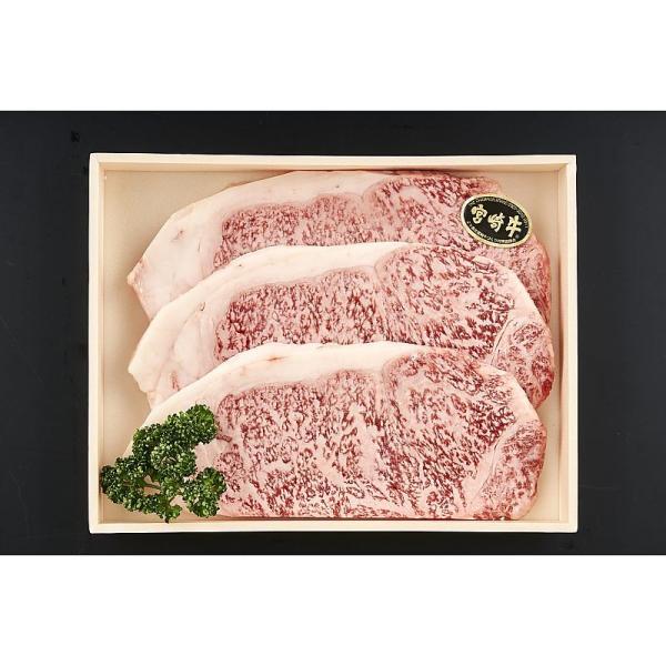 ( 産地直送 お取り寄せグルメ ) 宮崎牛 サーロインステーキ 180g×3枚