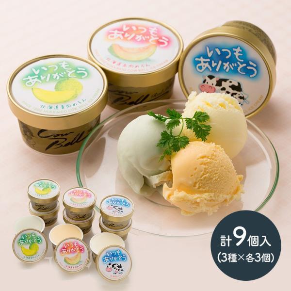 ギフト 北海道 アイス プレゼント いつもありがとうラベル 十勝 アイスクリーム 計9個 スイーツ メロン 贈り物 食べ物 送料無料 SN1003-0700 高級 敬老の日 2021